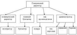 Организационная структура управления рестораном