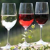 Энциклопедия вина