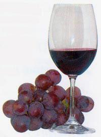Выбор вина на свадьбу. На примере вин Геленджика